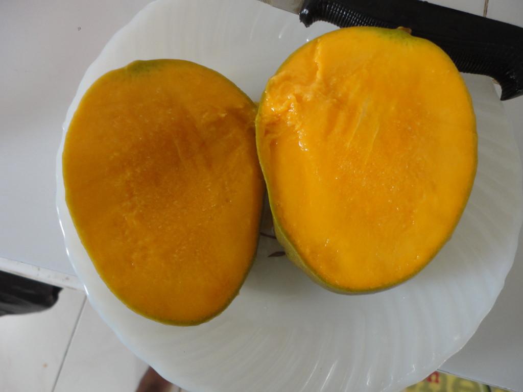 Mango Time